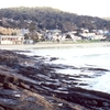 Lorne, Victoria Viewed From The West Beach
