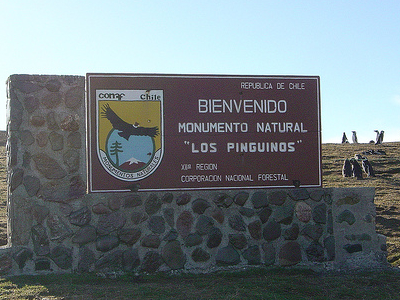 Los Pinguinos Natural Monument