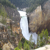 Lower Falls Of The Yellowstone River Wyoming