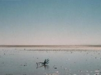 Lake Eyre