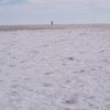 Lake Eyre Salt Crust