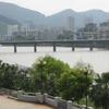 Liedong Bridge Over Sha River
