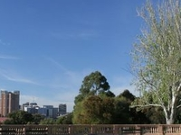 Montefiore Hill