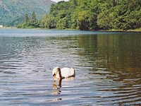 Loch Achray