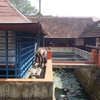 Lotus Pool Inside The Temple