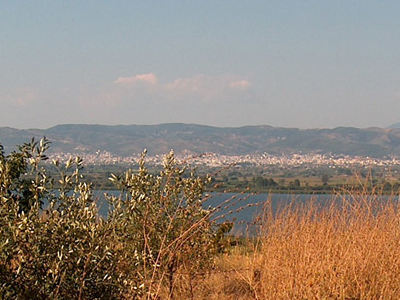 Lysimachia Lake