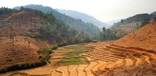 Mae Chaem Rice Paddies