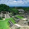 A View Of The Main Plaza Of Palenque