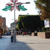 Main Plaza And 5 De Mayo Street