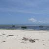 Malindi Marine National Park