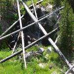 Mallard Creek Trail