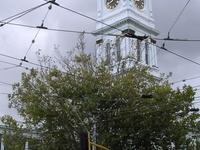 Stonnington City Centre