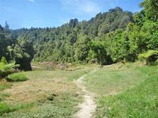 Mangapapa Campsite