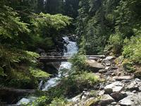 Mangatoatoa Hut to Te Rangaakapua Hut Trail
