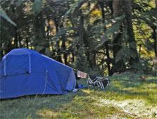 Mangawaiiti Campsite