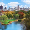 Manhattan Central Park & NY Skyline