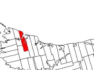 Lot 21-Prince Edward Island