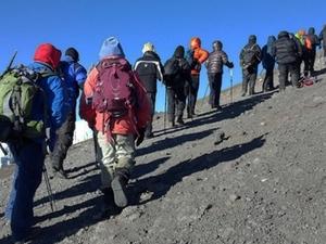 Kilimanjaro Climb - Marangu Route Coca Cola Route Photos