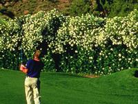 Marriott's Mountain Shadows Resort & Golf Club