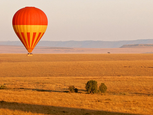 Masai Mara and Lake Nakuru 4 Days Camping Safaris Photos