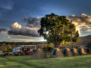 3 Days Masai Mara Joining Camping Safari Photos