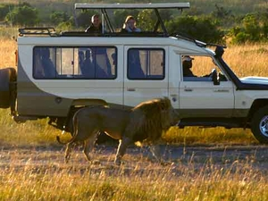 3 Days Masai Mara Exclusive Safari