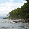 The Forested Coast Of Masoala National Park
