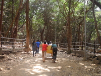 Matheran Trail