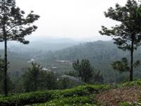 Mathikettan - Kumily Town