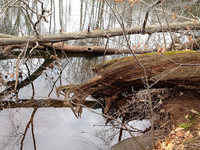Mattabesset River