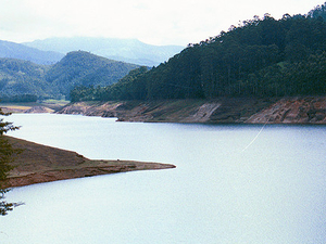 Munnar And Kochi Tour Packages Photos