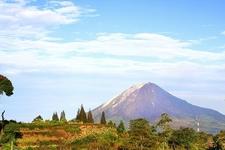 Medan Landscape - Sumatra
