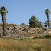 Megiddo Site