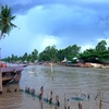 Gorgeous Mekong Delta Water Life 2 Days
