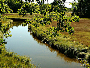 Merriland River