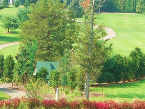 Miner Hills Family Golf, Llc