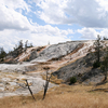 Minerva Terrace - Yellowstone - USA