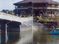 Mirasol Lake Garden