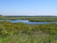 Mlawula Nature Reserve