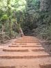 Monkey Point Step Trail - Matheran - Maharashtra - India