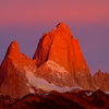 Monte Fitz Roy In Alpenglow - Patagonia Argentina