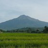 Kanlaon Volcano As Seen From The East