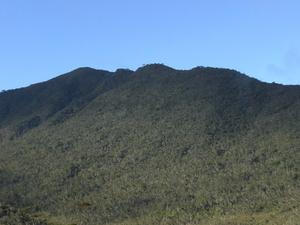 Mount Hamiguitan