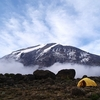 Mount Kilimanjaro Morning View From Tanzania