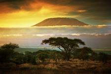 Mount Kilimanjaro With Amboseli