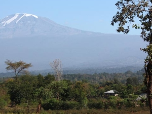 One Day Trip Around Kilimanjaro