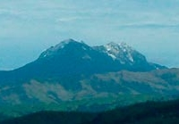 Mount Hikurangi Track