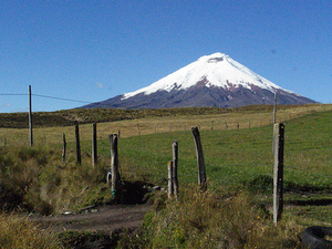 Visit Cotopaxi National Park Photos