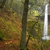 Mt. Hood NF Elowah Falls OR