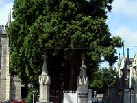 Mount Jerome Cemetery